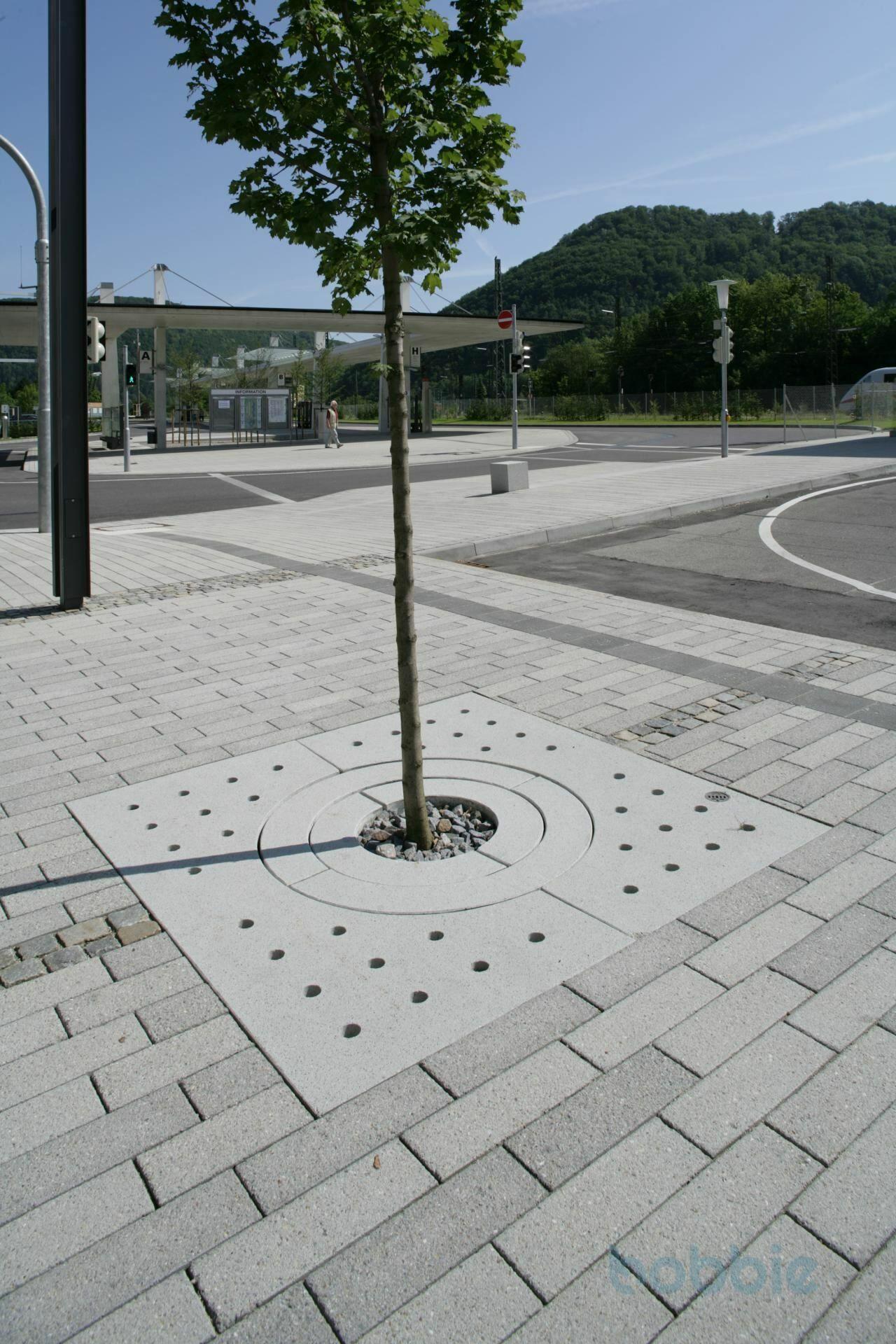 Baumschutz, ARPANA® BAUMSCHEIBE, Typ Berlin, 1800x1800